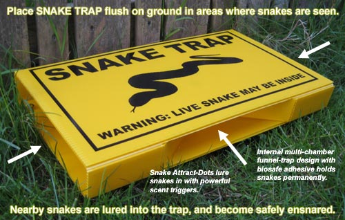 Snake Trap Buy Here Information On Snake Repellent